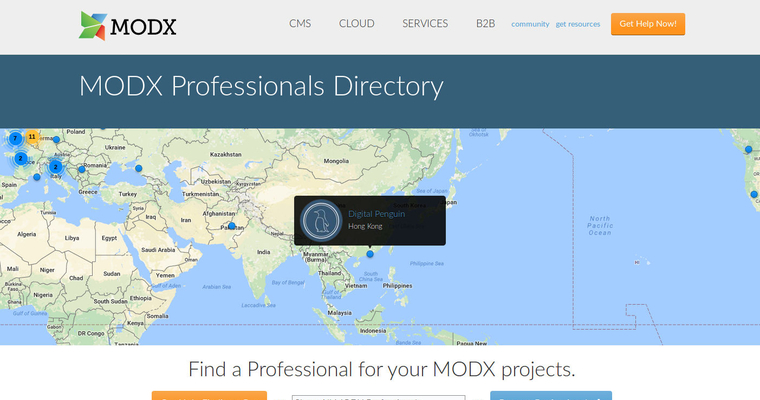 We Are MODX Professionals